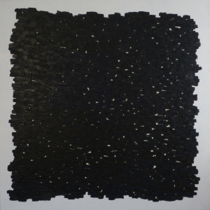 Black Elements, 2011, oil on canvas, 60 x 60 inches